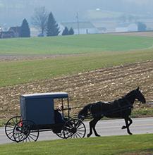 Spring Amish